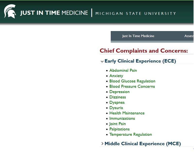 chief complaints and concerns